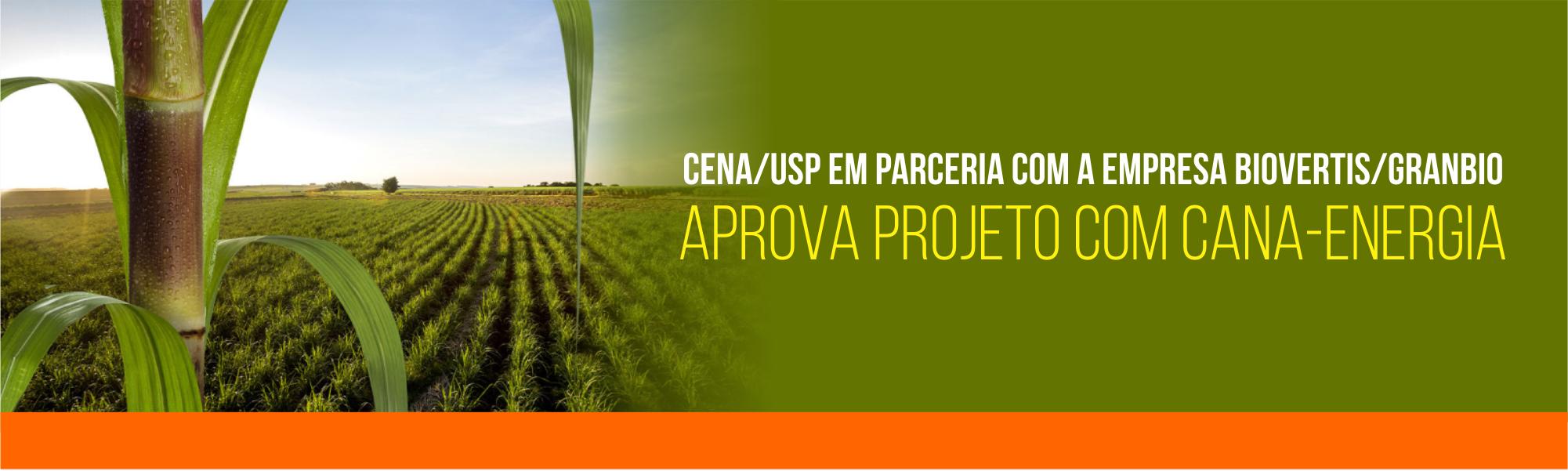 projeto_cassio